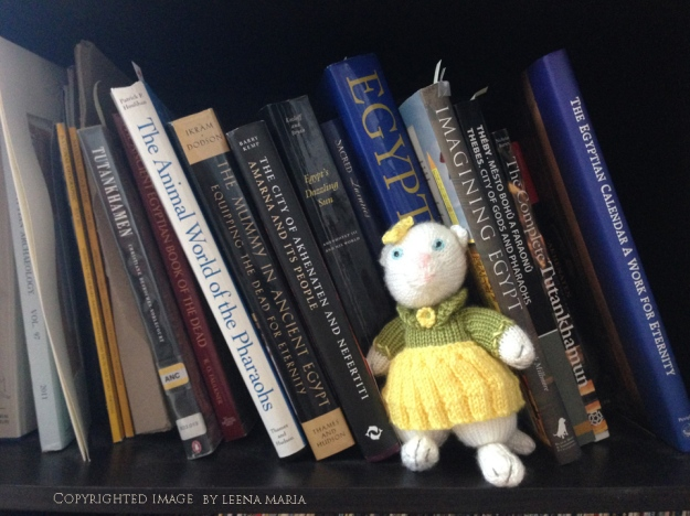 Knitted kitty on a bookshelf