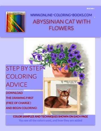 OCB 1 Abyssinian Cat With Flowers - Cover (1)-page-001
