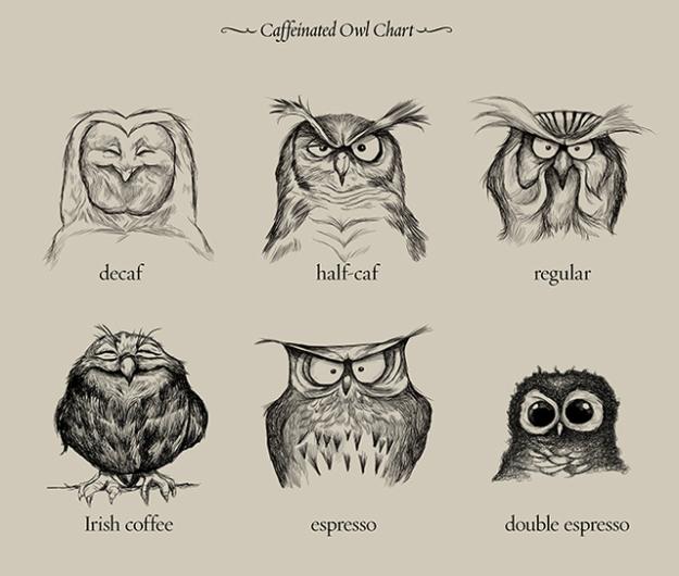 20130704-10515325-caffeinatedowls.jpg